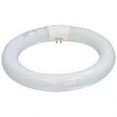 Reservelamp voor Loeplamp 22W diameter 20,5 cm